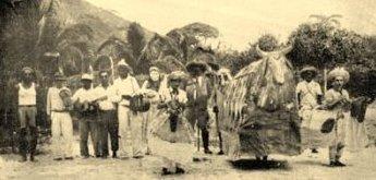 Dança do Boi de Ubatuba - 1951